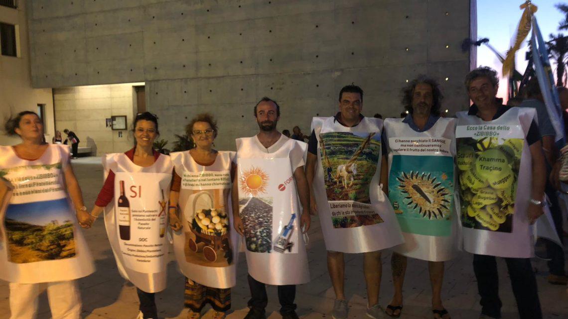 manifestazione doc pantelleria