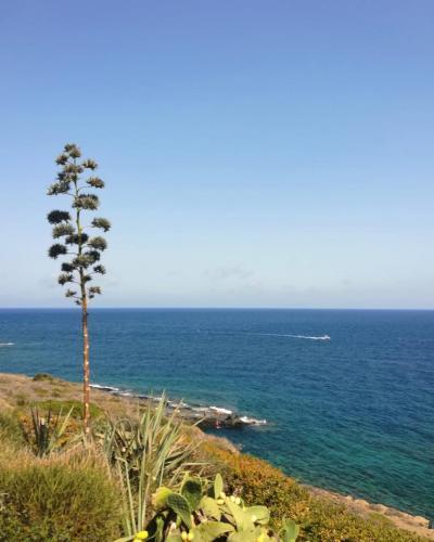 Pantelleria di Tommaso Brignone 160