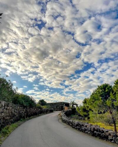 Pantelleria di Tommaso Brignone129