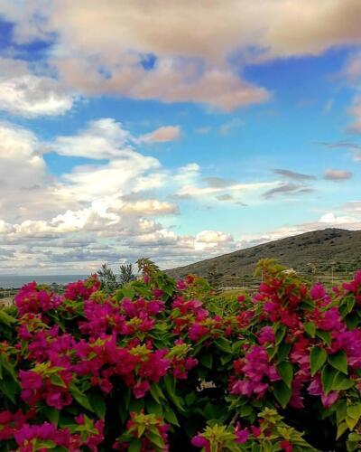 Pantelleria di Tommaso Brignone131