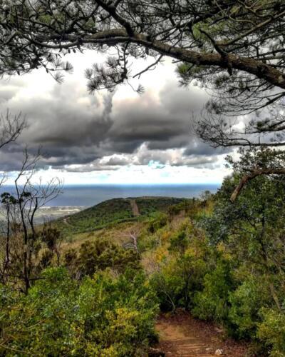 Pantelleria di Tommaso Brignone134