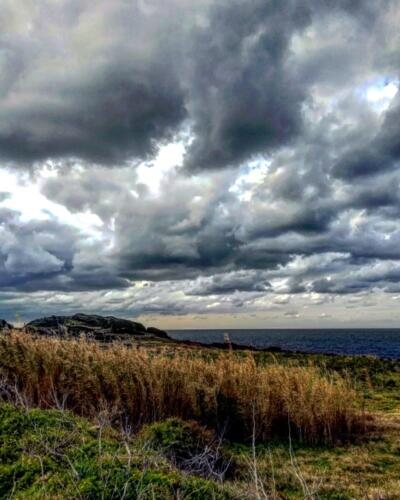 Pantelleria di Tommaso Brignone143